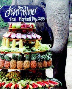 Thai elephants celebrate national day in their honour