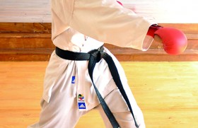 Kaveen kicking his way to karate glory