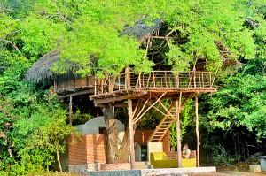 The Damba tree-house