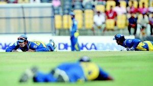 Sri Lankan players try to evade a wasp attack