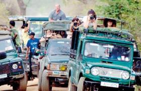 Law of the jungle in Lanka's premier wildlife park