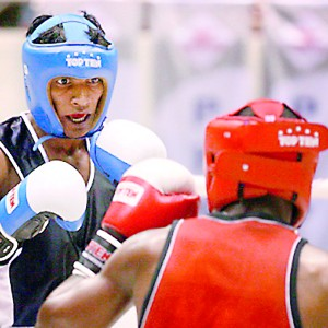 The Novices will feature a host of local pugilists
