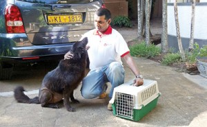 Gayan Wickramaratne with a canine friend