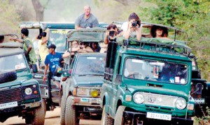 Safari going awry: Jeep drivers are accused of taking the law into their hands with scant regard for the park's rules
