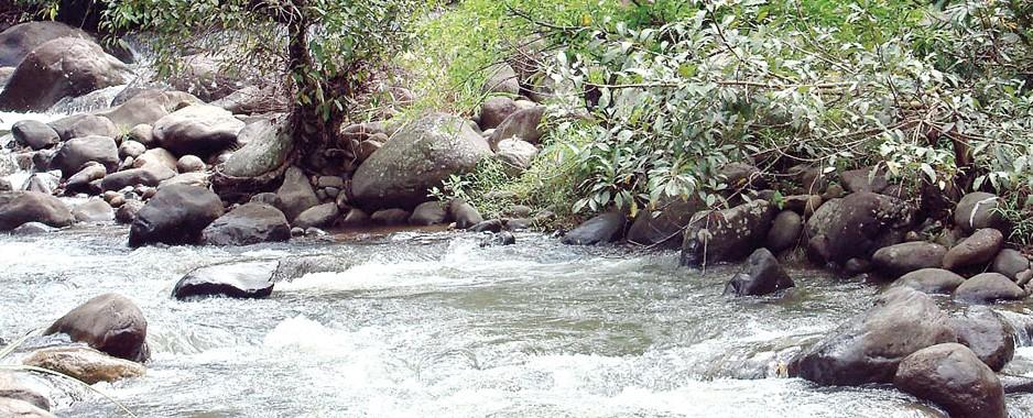 Romance and Adventure at River Garden Belihuloya