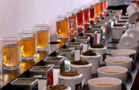 Dilmah opens its first t-Bar in India