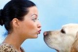 Dog owners have a healthier heart