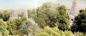 Pearl-of-Thirukettisvaram