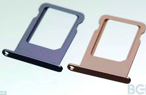 iPhone 5S colours: The SIM card trays appear to show handsets being made in   silver and gold