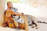 One man and his tiger