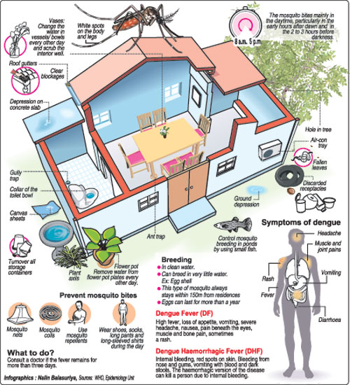 prevention of dengue sri lanka To minimize the health, economic and social impact of the disease by reversing the rising trend of denguenational dengue control unit - ministry of health - sri lanka.