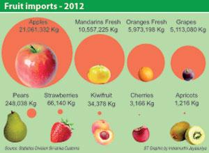 Fruit Importer