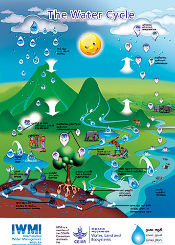 Water Cycle poster for schools | The Sundaytimes Sri Lanka