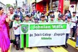 Johnian Walk 2013