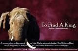 The search for 'Walawe Raja'