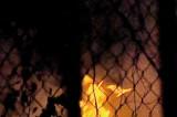 Colombo Mayor asks police to probe file burning