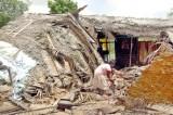 Wild elephant attack leaves family destitute