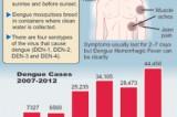 Public warned of  rains bringing possible dengue outbreak