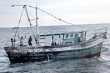 Tamil Nadu exports fish robbed from Lanka