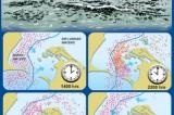 Fisheries DG says Tamil Nadu and EU playing politics
