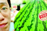 Japan's luxury fruit masters grow money on trees