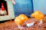 Just what is in that chicken nugget?
