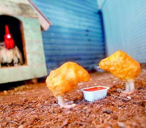 """A scene titled """"Chicken Nuggets"""" from artist Banksy's new installation """"The Village Pet Store and Charcoal Grill"""" in New York City (AFP)"""