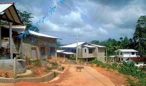 Four-new-houses-taking-shape-in-a-resettlment-site