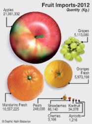 Fruit-Graphic