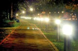 Rs. 300,000 monthly to light up Vihara Maha Devi park at night