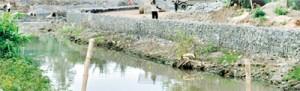 Rattanapitiya, Boralesgamuwa: Where work on the project has begun