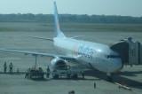 Panic as peacocks hit plane at MRIA