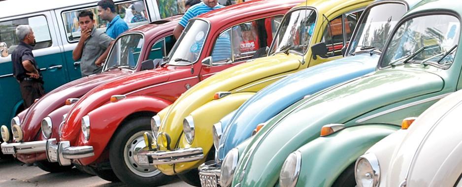 Year plan for Volkswagen Beetle Club in 2014