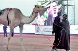 Saudi Arabia: The last of the Sudeiri Seven
