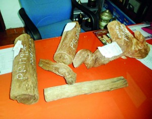 File picture of Walla Patta logs seized by the Police