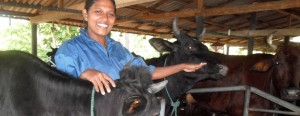 Samanlatha Athapattu and Wasantha Lal gave up their jobs in a garment factory to set up their own dairy farm