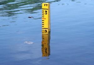 Water level in Kelani Ganga is at 2 ft. Pic by Indika Handuwela