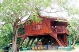 DWC circuit bungalows go online