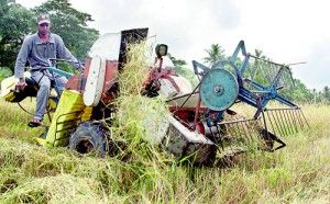 Sena Amaradasa: Squeezed between rising cost of living and low paddy prices