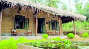 Eco chalets: Thatched roofs and clay brick walls