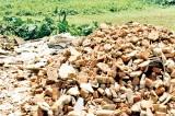 Owner demands return of 2 ½ acre bloc of land at Kirulapone
