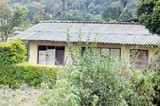Court orders eviction of families living in Haggala Forest Reserve
