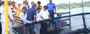 Minister Rajitha Senaratne, Oceanpick Founder Irfaan Thassim  and  others  at the site.