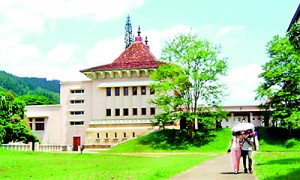 The Peradeniya campus: Then freshers walked without fear