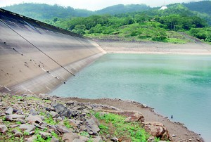 The lack of water in the Kotmale reservoir affects cultivation in the Polonnaruwa District. Pic by Suranga  Rajanayake