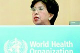 Poor diagnosis driving global  multidrug- resistant TB, WHO warns