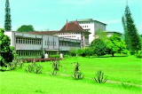 What the University of Ceylon, Peradeniya taught me
