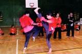 Spectators agog at martial arts display