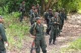 Operation in the Mullaitivu jungles