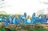 Macaw family's adventure in Amazon